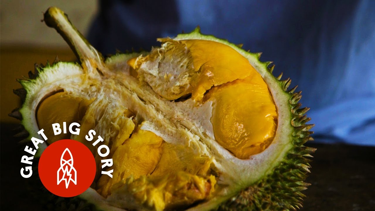 Images Durian Fruits
