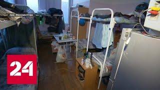 Бизнес на шести сотках: в Новой Москве множатся нелегальные общежития - Россия 24