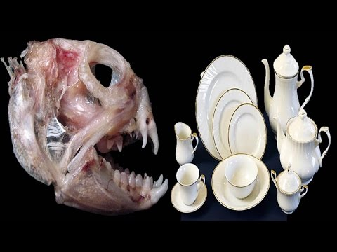 How Bone China Crockery is Made ? Indian Must Watch ...!