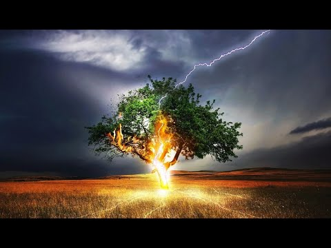 Lightning Strikes Tree, Water, People, Car...: HD Lightning and Thundering Compilation