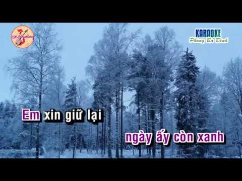 Tân cổ : Phải Chi Ngày Ấy- Thuỳ Tâm & Thuật Nguyễn