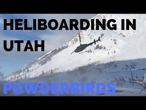 Heliboarding PowderBirds Utah - 2019