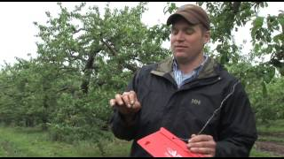 New England Apple Growers Battle Pests with IPM (part 2 of 3)
