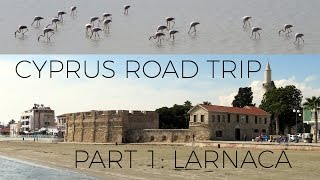 Larnaca, Cyprus 2017 🇨🇾: Beach, Sights and Flamingos (VLOG 1/6)