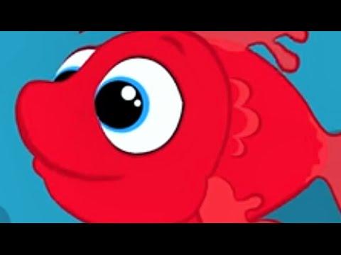 kırmızı balık gölde  sevimli dostlar  çizgi film çoçuk şarkıları 2015