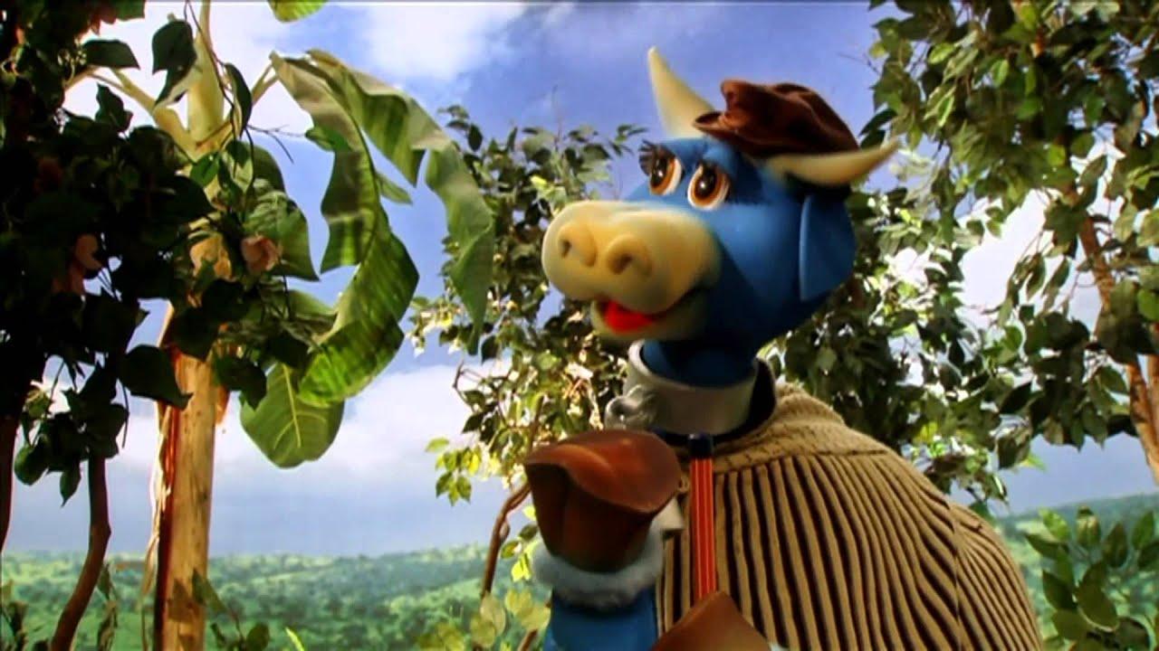 Portifolio Cocorico Vaca Mimosa Youtube