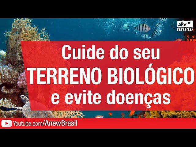 Cuide Do Seu Terreno Biológico E Evite Doenças
