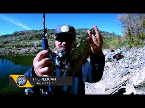 Fishing Videos Diamond Valley Lake Trout Fishing Pelican Report So Cal Freshwater Fishing