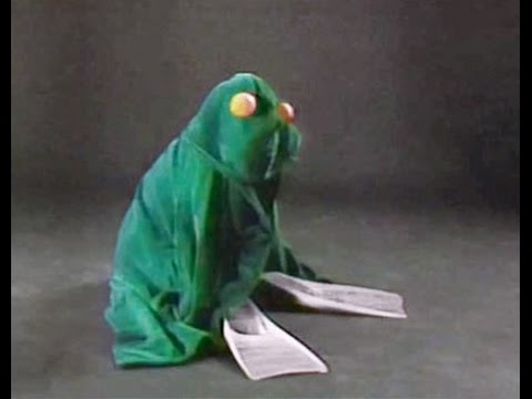 Sesame Street - Fay Ray - Animal Disguises