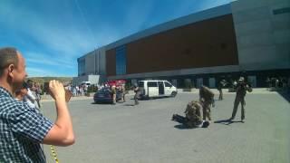 """Pro Defense 2-5.06.2016  Expo Arena Ostróda Pokaz JS 1013 """"Nemesis"""""""