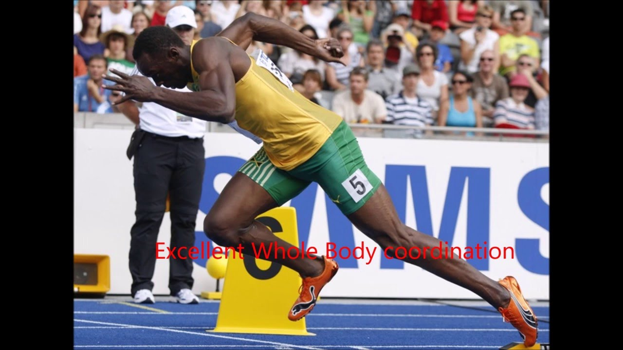What makes Usain Bolt so fast - answers.com