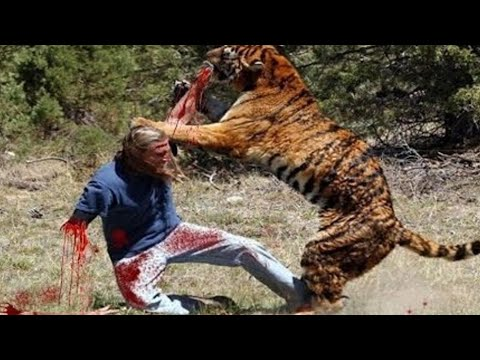 [African Lion Diary] Mysteries Of Animal Attacks: Why Lions Attack On HUMAN? | Nat Geo Documentary from YouTube · Duration:  52 minutes 29 seconds