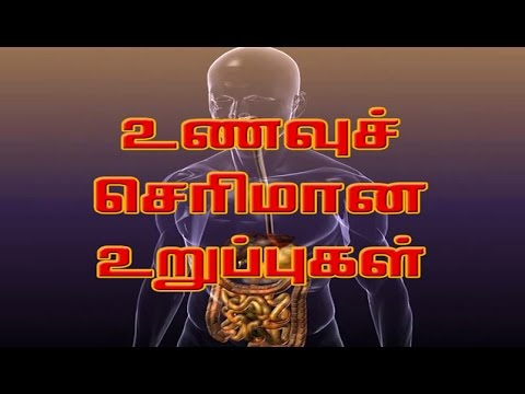 human body parts and functions in tamil pdf