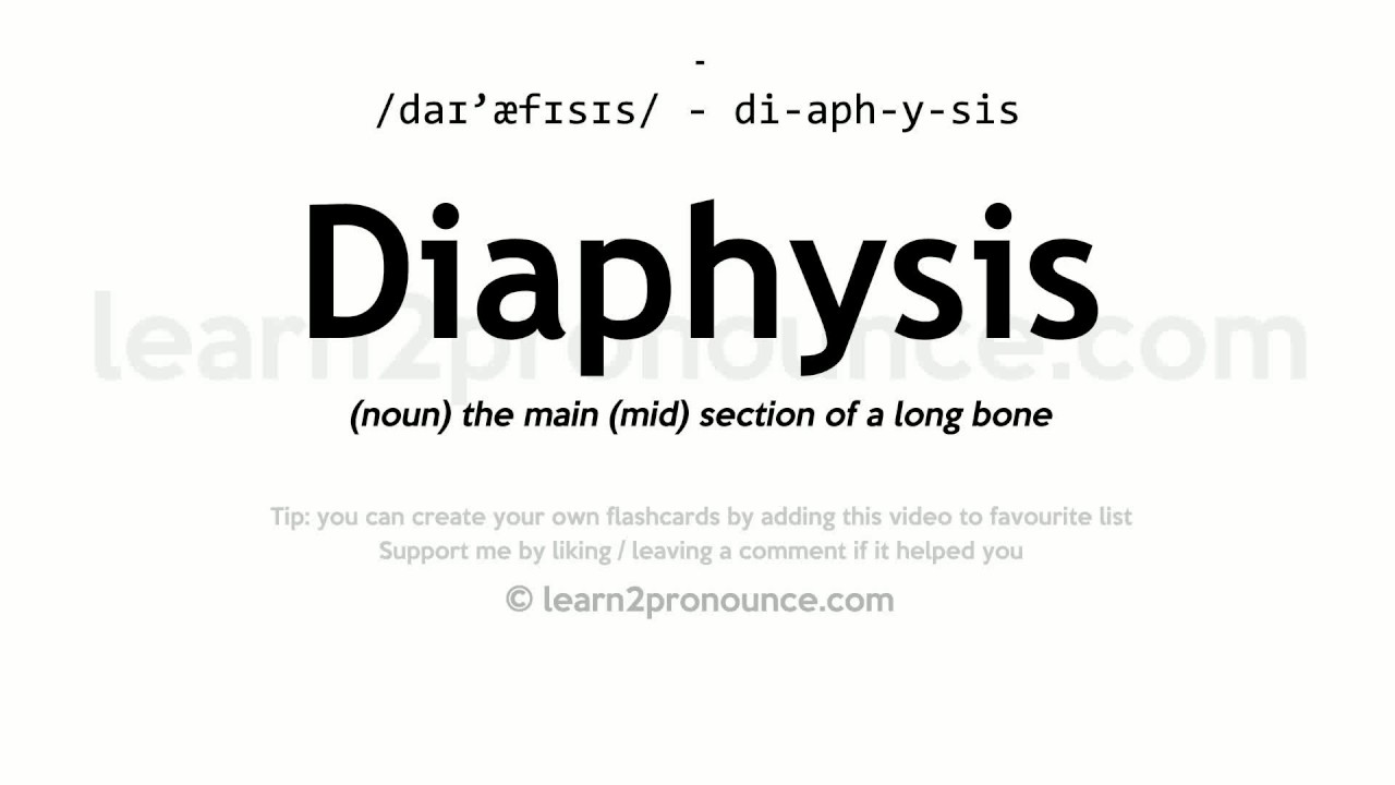 diaphysis pronunciation and definition youtube