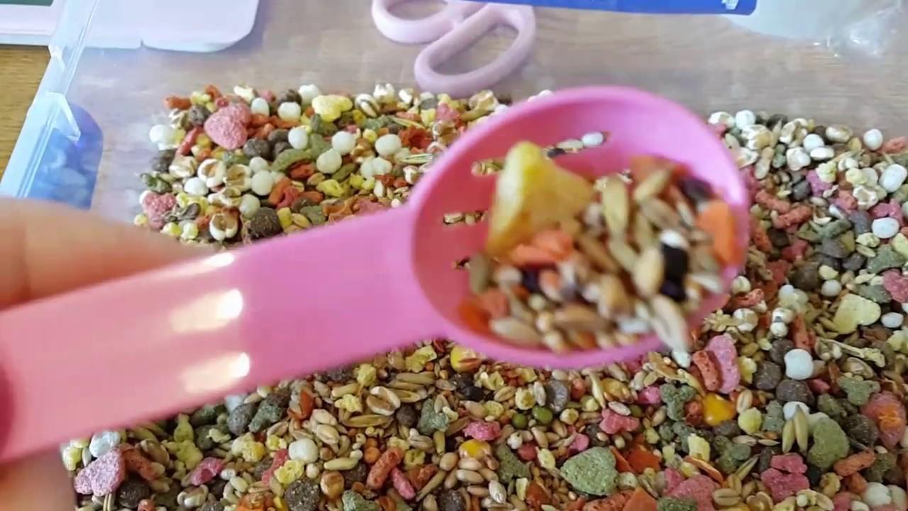 Hamster Food Review - JR Farm Hamster Mix