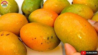 Mango fruit आम का जूस कैसे बनाते हैं घर पर juice recipe summer drinks aam ka juice kaise nikalte hai
