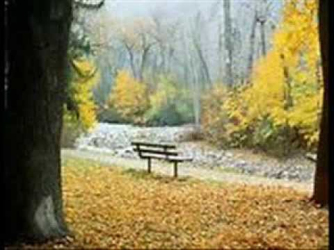 Au coeur de l'automne (Marie Laforêt) Reprise