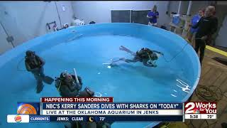 NBC's Kerry Sanders dives with Oklahoma Aquarium bull sharks