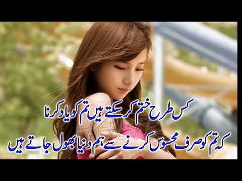 Nice And Best Collection of 2 Lines Poetry |Romantic Poetry|By Hafiz Tariq Ali| Urdu Poetry|Hindi Po