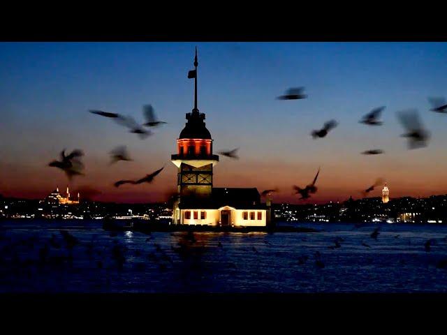 Kız kulesi ve Martılar / Maiden's Tower and Seagulls, Istanbul / Türkiye