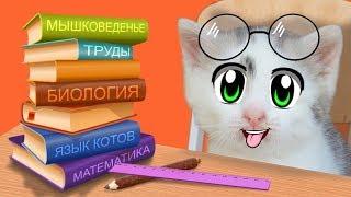 ШКОЛА КОТОВ: НОВЫЕ УРОКИ! КОТ МАЛЫШ и Кошечка МУРКА 24 ЧАСА В ШКОЛЕ! БАФФИ УЧИТ КОТЯТ Back To School
