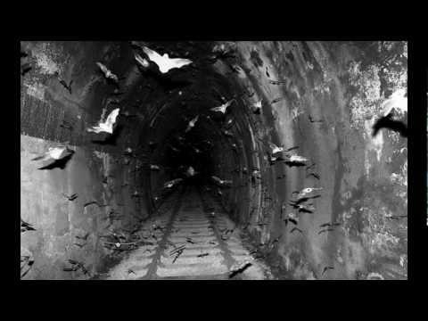 Paul Van Dyk  – Let's Goскачать. Слушать =>Paul van Dyk - Vonyc Sessions 272 (10.11.2011) (Guestmix Cosmic Gate ) - Francis Davila feat. Flaminia Villagran-Let's Go Out Tonight (Giuseppe Ottaviani Remix)