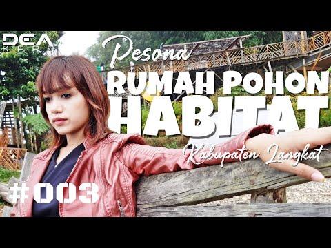 keren!!!-pesona-rumah-pohon-habitat-(english-subtitles)