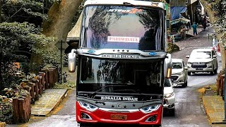 story wa bus rosalia indah 30detikterbaru2021 story wa 30 detik terbaru 2021 story wa kekiniankeren