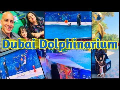 Dubai Dolphinarium| Best Of Dubai Dolphin Show| Dubai Creek Park| Best Places To Visit In Dubai