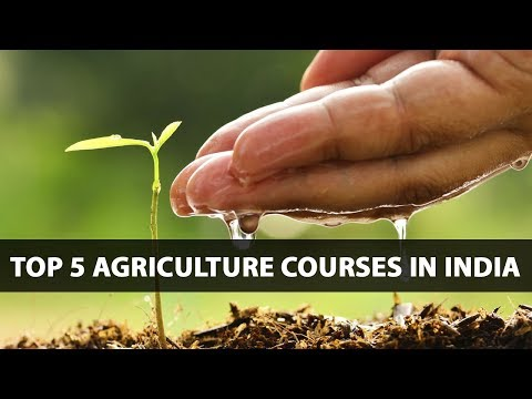 TOP 5 AGRICULTURE COURSES IN INDIA