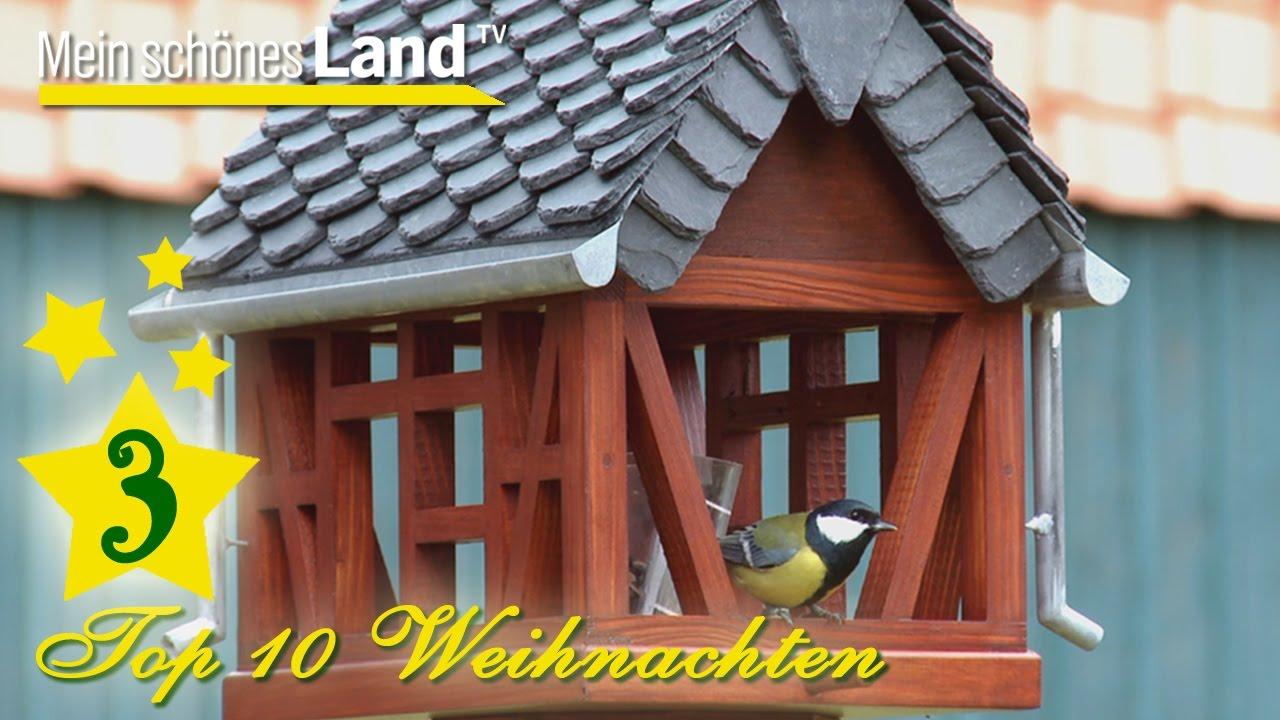 vogelhaus aus fachwerk mit regenrinne in handarbeit - top 10 der