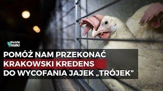 Pomóż nam przekonać Krakowski Kredens do wycofania