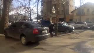 Мой город Н: мужчина с бойцовской собакой без поводка гуляет возле гимназии