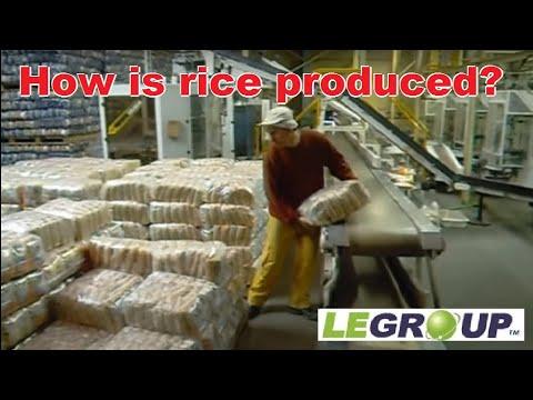 Long Grain Rice Industry - LE Group Industries