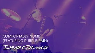 David Gilmour - Comfortably Numb (featuring Purple Rain)
