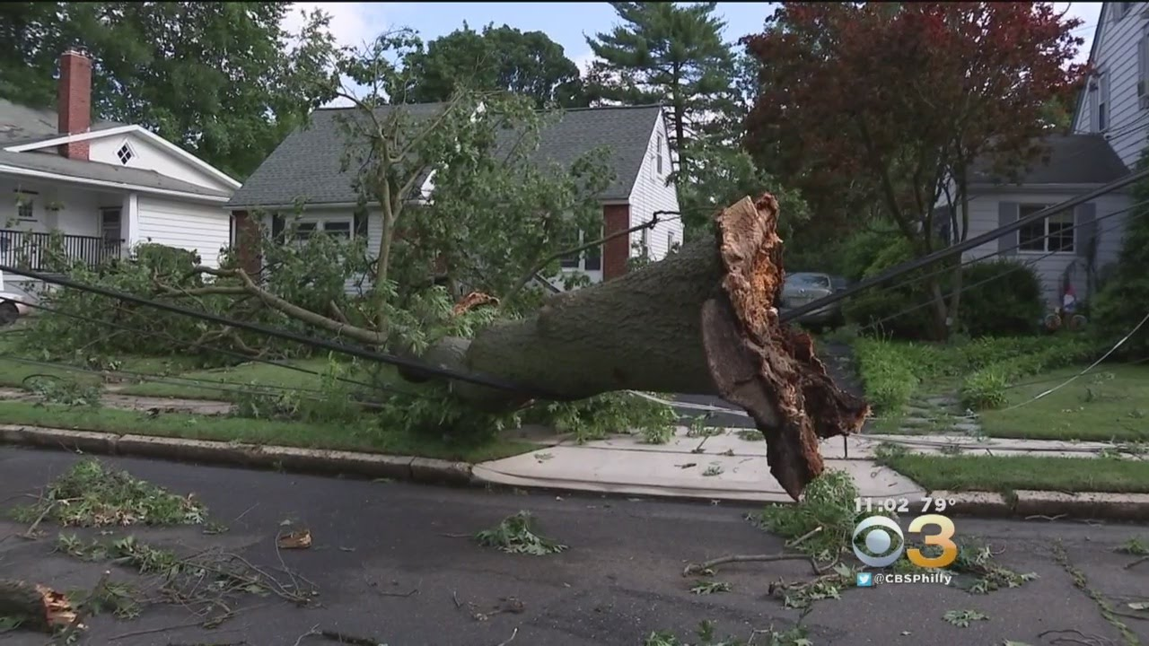 Powerful Storms Bring Down Trees, Cause Flooding, Power Outages
