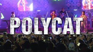 POLYCAT @CAT EXPO#4