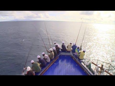 Rio Mare Pole & Line Tuna