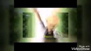 اغنية ديسبايسيتو كاملة القط الاسود و الدعسوقة🐱🐞