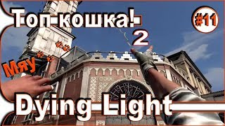 Dying Light - Самая лучшая кошка 2 / Топ инструмент - Часть 12