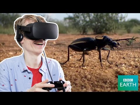 PLANET EARTH IN VIRTUAL REALITY | Oogie VR (Oculus Rift CV1
