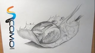 Dibujo de una gota de agua
