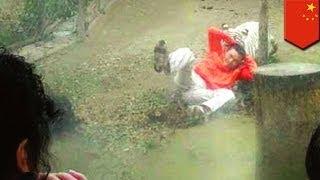中国四川省の動物園でホワイトタイガーの檻に侵入し、挑発した男が飼育...