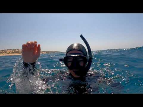 Vlog 9: A day diving with Liquid Dive Adventures, Tofo Mozambique