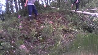 Рубка дерева по русски.(Один рубит другой висит., 2014-08-11T12:24:31.000Z)