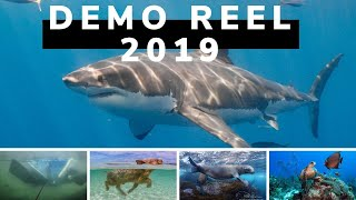 2019 Highlight reel for Whalen Underwater Productions
