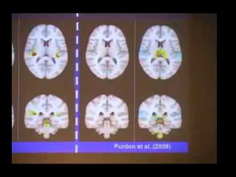 Revealing the Brain through States of Unconsciousness: Anesthesia, Coma, Sleep