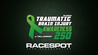 Traumatic Brain Injury Awareness 250