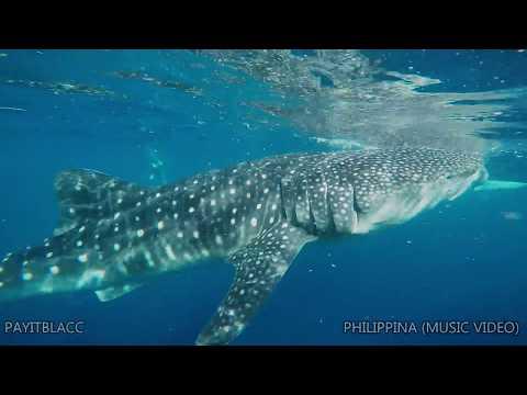PAYITBLACC - PHILIPPINA  (SINGLE MUSIC VIDEO)