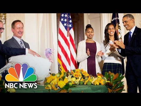 President Obama's Best Turkey Pardon Moments | NBC News